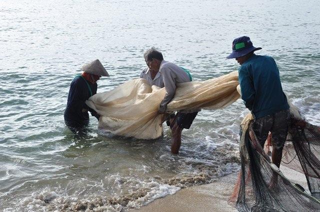 Quảng Ngãi: Theo chân ngư dân bãi ngang kéo trũ bắt cá - 7