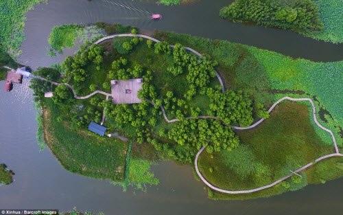 Lạc giữa hồ hoa sen đẹp mê hồn ở Trung Quốc - 5