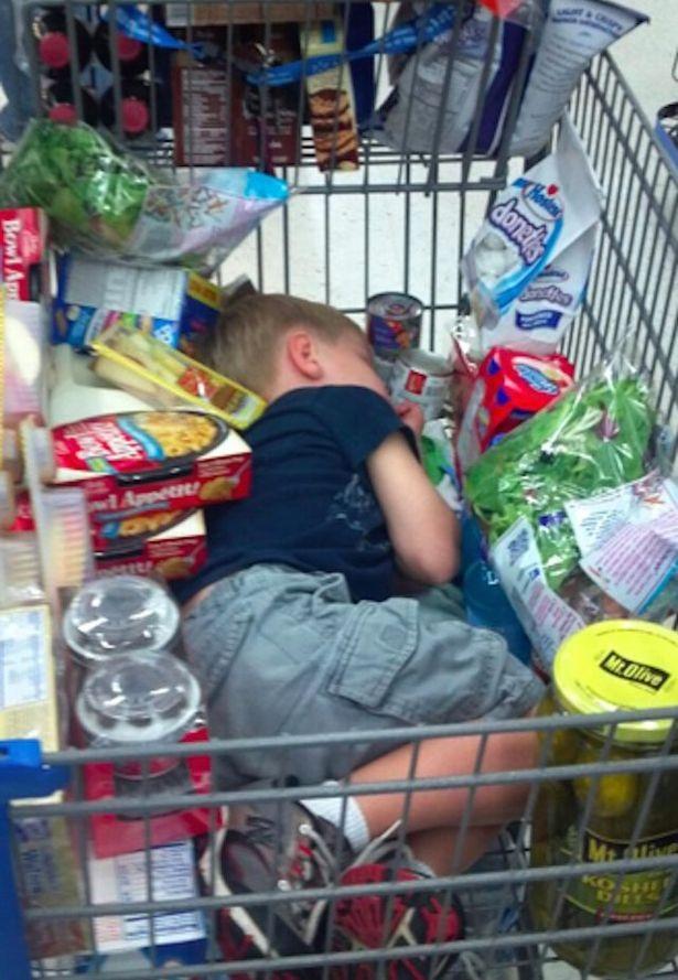 Ngủ giữa bạt ngàn đồ ăn là giấc ngủ no đủ nhất