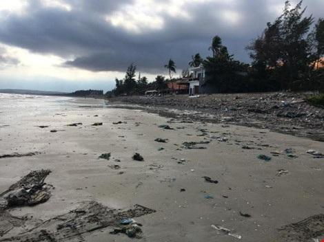 Bãi biển cần rất nhiều bàn tay chung sức dọn dẹp để khôi phục cảnh quan.