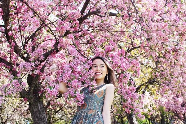 Đến Canada vào thời điểm cuối tháng 5, du khách không khỏi ngỡ hàng trước hình ảnh hoa anh đào bung nở ở khắp nơi.