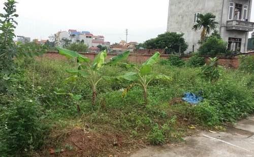 Mảnh đất được nhiều cán bộ, lãnh đạo huyện Hoài Đức ký trong quy trình cấp sổ đỏ ma dẫn đến người dân bị lừa đảo chiếm đoạt hàng trăm triệu đồng.
