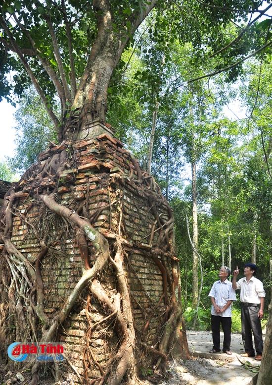 Cận cảnh rễ cây bồ đề bám vào tháp cổ phía sau đền Gôi Vỵ.