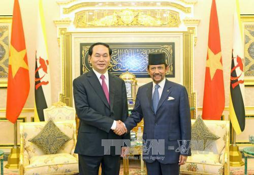 Chủ tịch nước Trần Đại Quang hội kiến với Quốc vương Haji Hassanal Bolkiah Mu'izzaddin Waddaulah. Ảnh: Nhan Sáng/TTXVN