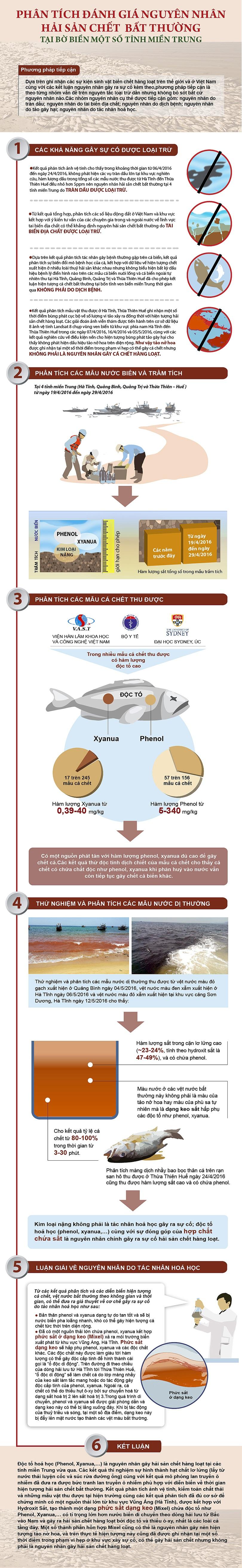 [Infographics] Hành trình phân tích chứng cứ để buộc tội Formosa - 1