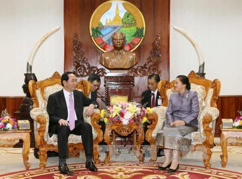 Chủ tịch nước Trần Đại Quang hội kiến với Chủ tịch Quốc hội CHDCND Lào Pany Yathotou