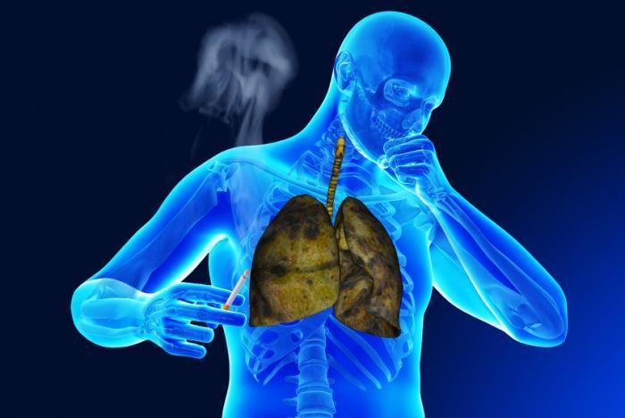 """3 cơ quan trong cơ thể bị thuốc lá """"đầu độc"""" - 1"""