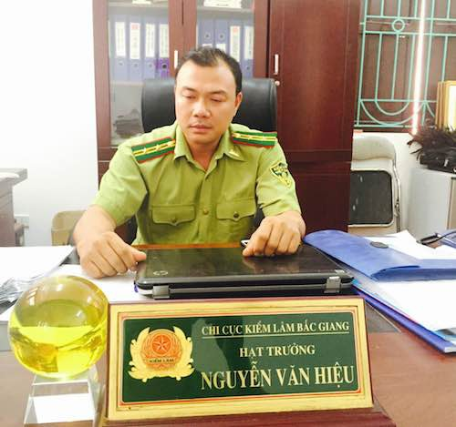 Ông Nguyễn Văn Hiệu - Hạt trưởng hạt kiểm lâm Sơn Động cho biết đã chuyển hồ sơ vụ gia đình chủ tịch thị trấn phá rừng sang Công an huyện Sơn Động.