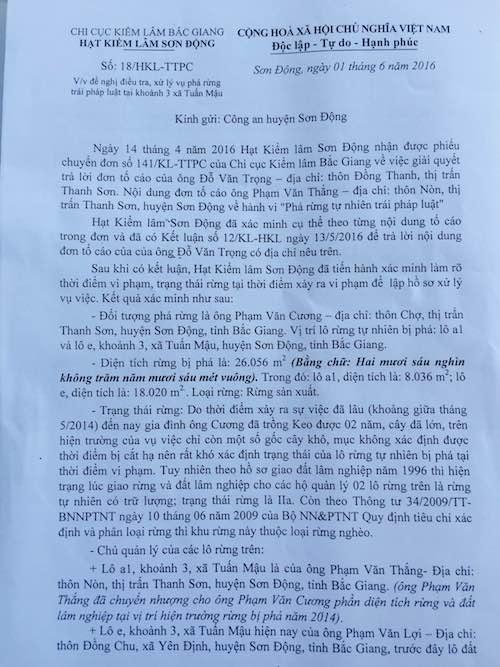 Bắc Giang: Dân phá rừng, công ty lâm nghiệp phá rừng và lãnh đạo cũng… phá rừng! - 3