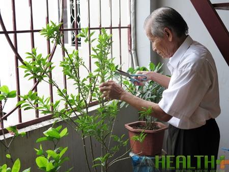 Bệnh parkinson thuyên giảm, ông Dương tự tay chăm sóc cây cảnh (nguồn healthplus.vn)
