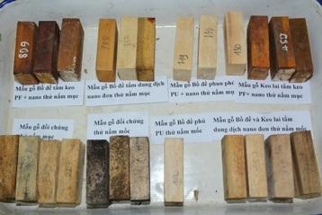 Kết quả thử nghiệm xử lý gỗ bằng vật liệu nano của Đề tài