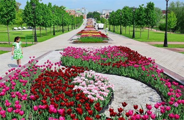 6 lý do khiến du khách lựa chọn Nga là điểm đến yêu thích mùa hè này - 8