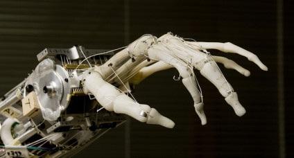Công nghệ bộ phận giả tiên tiến cho người tàn tật - 1