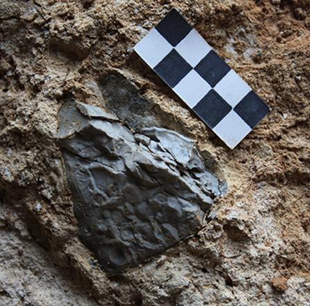 Bằng chứng phát hiện ra lửa xuất hiện sớm nhất ở châu Âu - 2