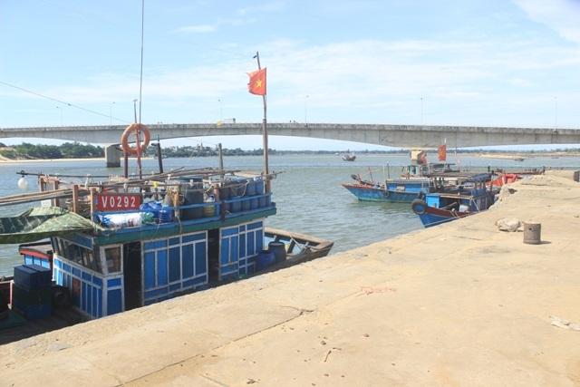 Cảng cá Cửa Tùng vắng tanh sau thông tin cá bị nhiễm độc
