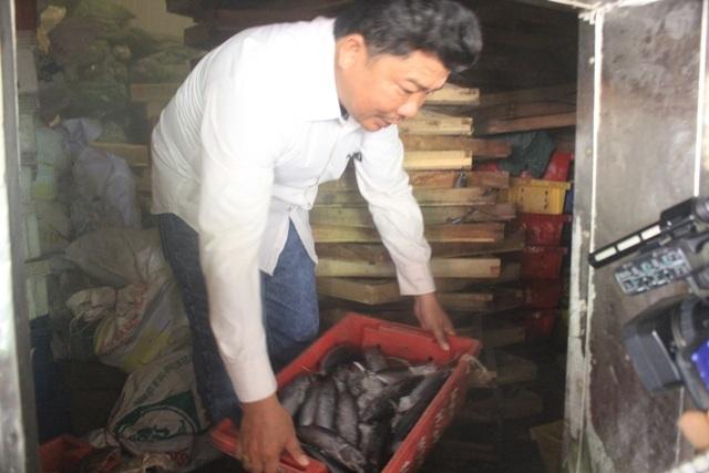 Cơ sở của anh Sơn hiện còn khoảng 80 tấn cá trong kho đông lạnh chưa thể tiêu thụ