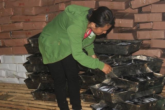 Cơ sở cá của bà Lê Thị Thuộc, nơi được xác định có cá nhiễm độc