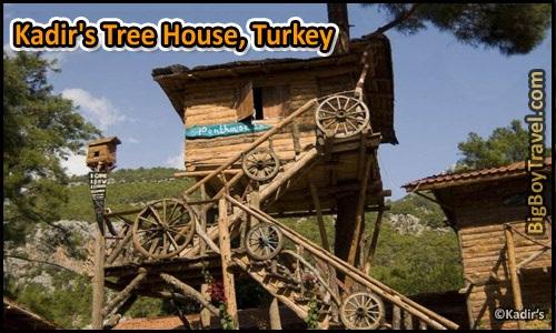 Những ngôi nhà trên cây độc đáo nhất thế giới (p2) - 14