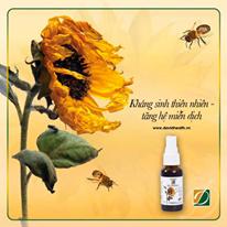 Các hợp chất vượt trội chứa trong keo ong đã đưa vào ứng dụng trong cuộc sống.