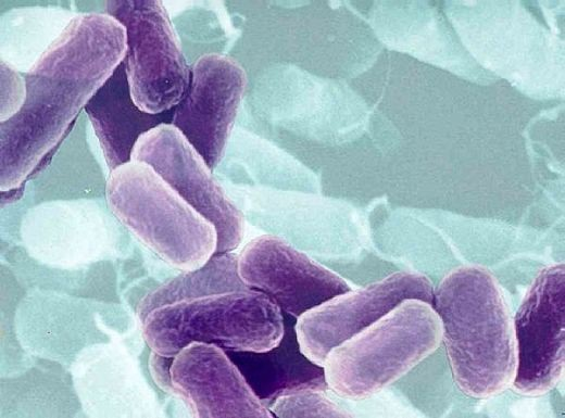 Người mắc bệnh lao có cơ hội khỏi bệnh nếu tuân thủ phác đồ điều trị - 1