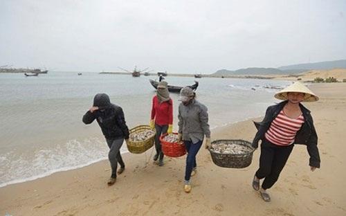 Thêm đối tượng và tăng thời gian nhà nước thực hiện các chính sách hỗ trợ người dân vùng biển miền Trung bị ảnh hưởng do vụ cá chết bất thường.