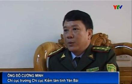 Ông Đỗ Cường Minh, Chi cục trưởng Chi cục Kiểm lâm tỉnh Yên Bái (Ảnh: Đài Truyền hình Yên Bái)