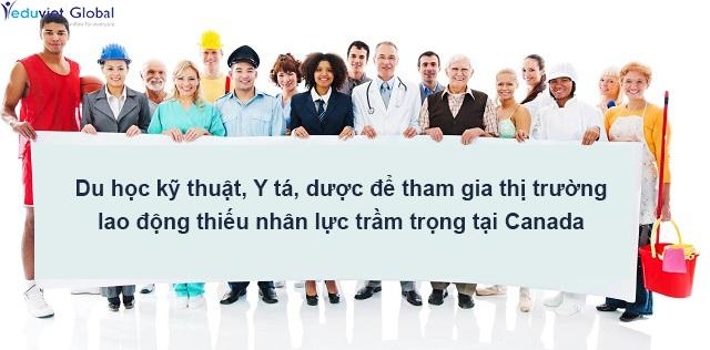 Du học ngành kỹ thuật, dược và điều dưỡng tại Canada theo chương trình CES - 1