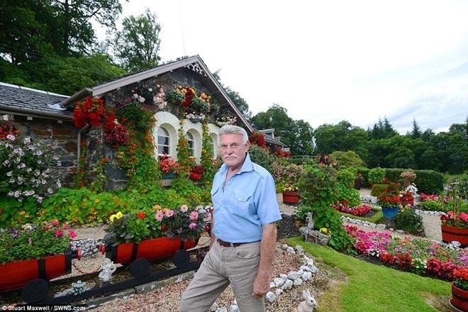 Làm thế nào để biến khu vườn cỏ dại thành điểm du lịch hút khách? - 2