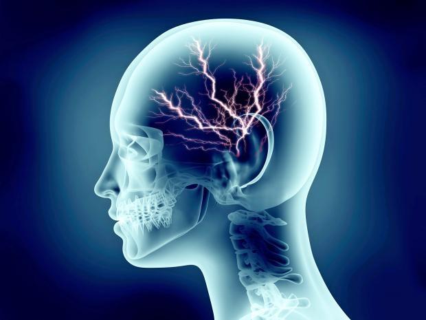 Không ham hoạt động thể chất  là dấu hiệu của thông minh? - 1