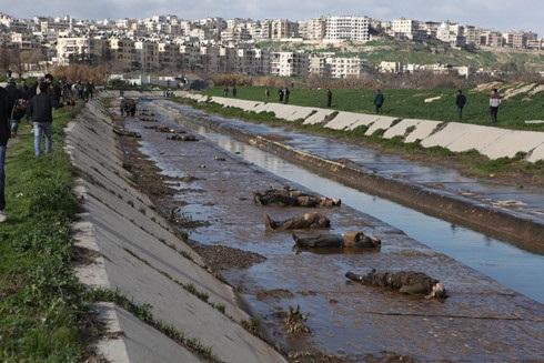 Thi thể những nạn nhân do các đợt không kích của các lực lượng ủng hộ chính phủ Syria tại Aleppo vào năm 2013.
