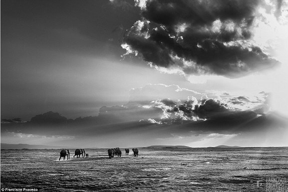Rung động với những bức ảnh vùng nông thôn Kenya - 1