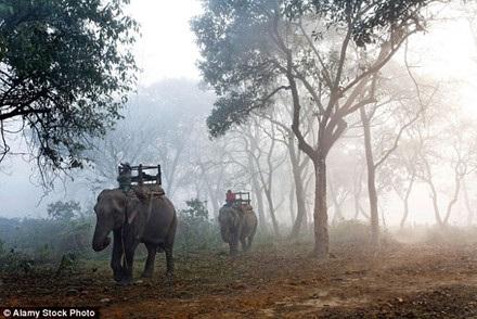 Nepal sống dậy từ đổ nát - 1