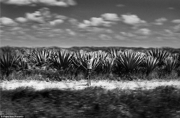 Rung động với những bức ảnh vùng nông thôn Kenya - 10