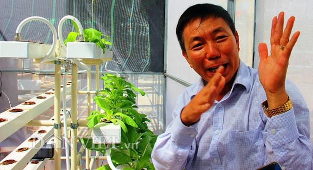 Theo ông Thư, với phương pháp thủy canh hồi lưu, chủ yếu cây rau hút nước để sống và trong nước có chất dinh dưỡng. Mỗi tuần, ông cho 1 bì dinh dưỡng (khoảng 100.000 đồng) hòa tan với 40 lít nước để vận chuyển chất đến các loại rau được trồng trong một giàn.