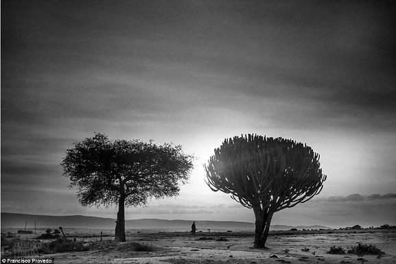 Rung động với những bức ảnh vùng nông thôn Kenya - 2