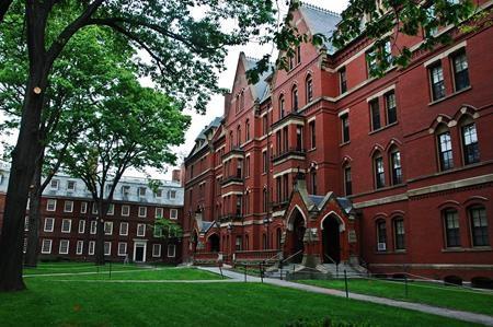 Nữ ca sĩ thậm chí còn từng mơ về Harvard