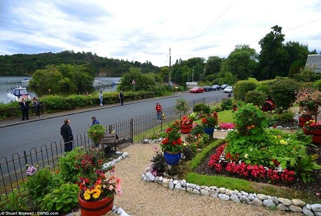 Làm thế nào để biến khu vườn cỏ dại thành điểm du lịch hút khách? - 4