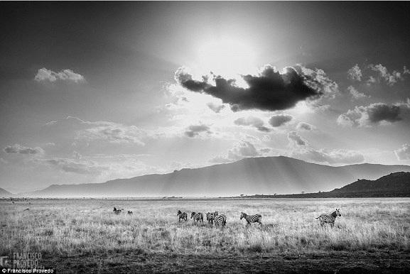 Rung động với những bức ảnh vùng nông thôn Kenya - 3