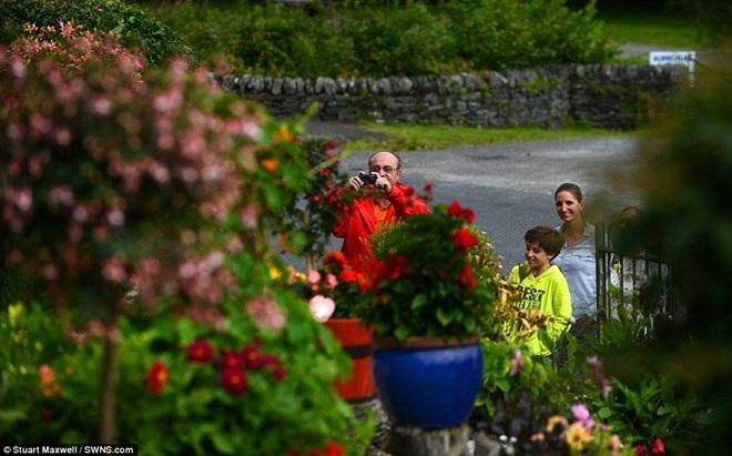 Làm thế nào để biến khu vườn cỏ dại thành điểm du lịch hút khách? - 5