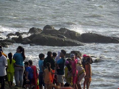 Hải cẩu xám bất ngờ xuất hiện ở biển Bình Thuận - 3