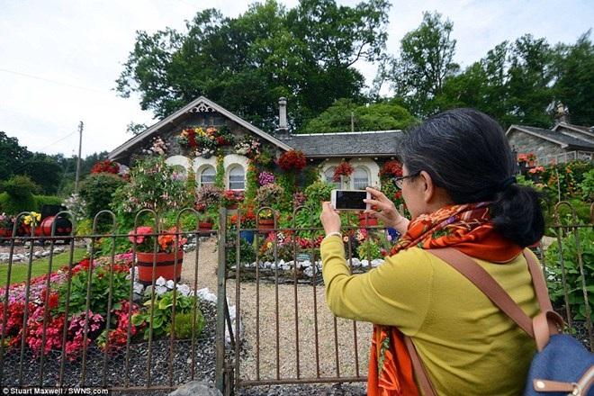 Làm thế nào để biến khu vườn cỏ dại thành điểm du lịch hút khách? - 6