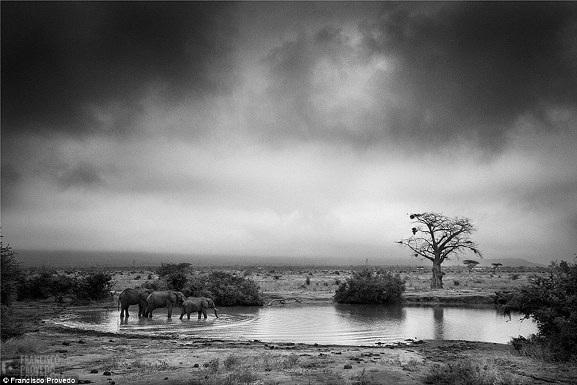 Rung động với những bức ảnh vùng nông thôn Kenya - 5