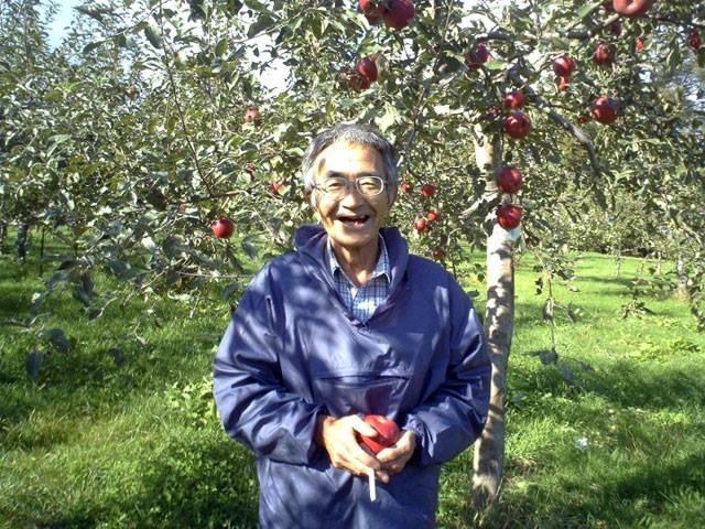 Ông Okinori Kimura bên cạnh vườn táo của mình