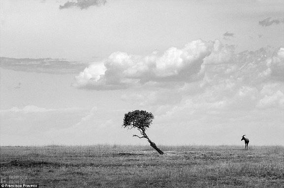 Rung động với những bức ảnh vùng nông thôn Kenya - 6