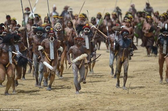 Hàng năm vào tháng Tám, bộ tộc Dani lại tổ chức trận giả với các bộ tộc láng giềng - những người Lani và Yali - để kỷ niệm ngày ra đời của tỉnh Papua cũng như để phát huy những truyền thống cổ xưa