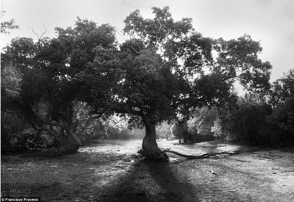 Rung động với những bức ảnh vùng nông thôn Kenya - 7