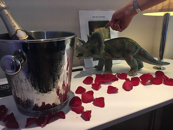 Yêu cầu của tôi có vẻ như là một trò đùa, rượu sâmpanh, hoa hồng và một con khủng long Dinosaur bằng nhựa.(Nguồn: boredpanda.com)