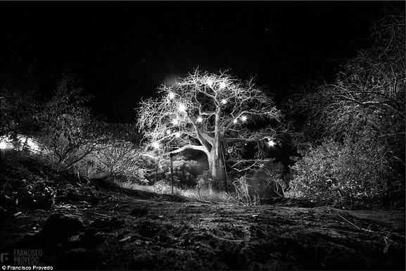 Rung động với những bức ảnh vùng nông thôn Kenya - 8