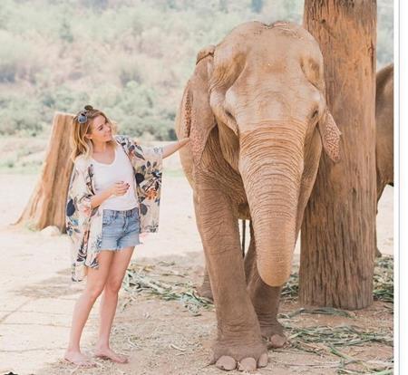 Lauren Conrad cũng là một sao nữ rất thân thiện với loài động vật to lớn này