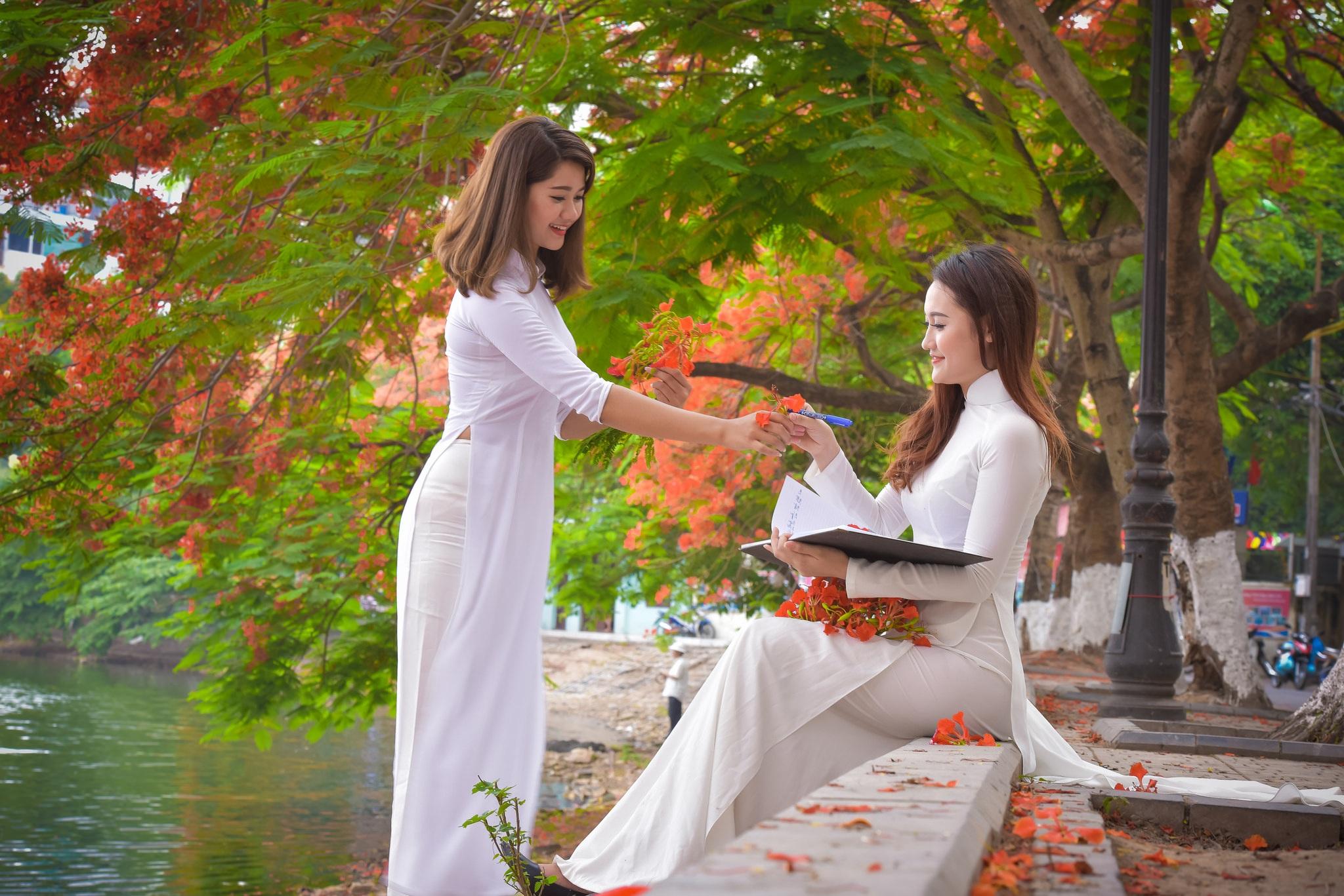 """Thiếu nữ Hà thành mơ màng bên hoa phượng """"rực cháy"""" - 4"""
